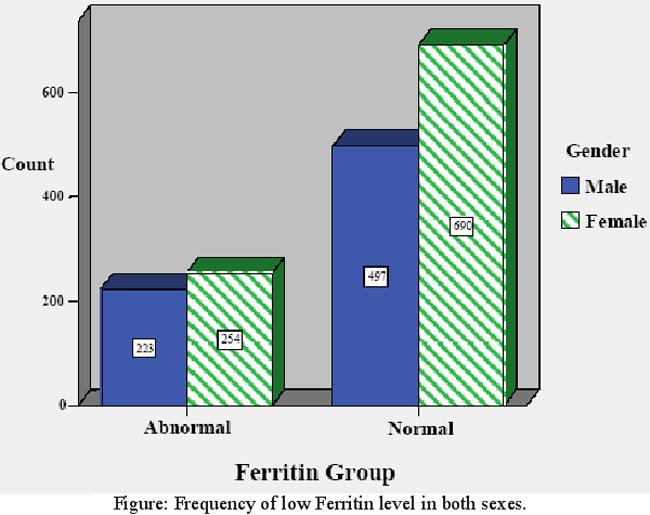 Normal ferritin levels in adults