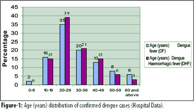 conclusion for dengue virus Writing papers on diseases, such as essays on dengue virus, is not a pleasant thing to do however, while writing your essay on dengue virus, you will learn some.