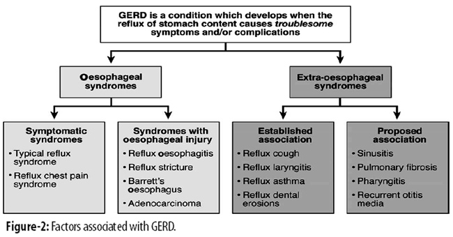 grade b gerd